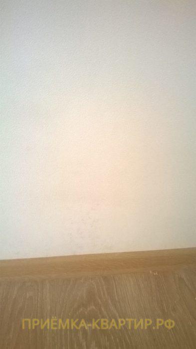 Приёмка квартиры в ЖК Весна 3: Плесень на стенах