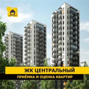"""Отчет о приемке 1 км. квартиры в ЖК """"Центральный"""""""