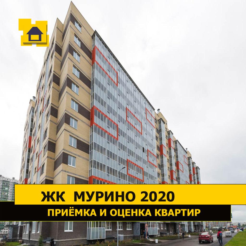 Отчёт о приёмке квартиры в ЖК мурино2020 13 января
