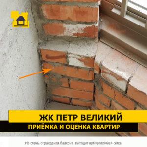 Приёмка квартиры в ЖК Петр Великий и Екатерина Великая: Из стены ограждения балкона  выходит армированная сетка