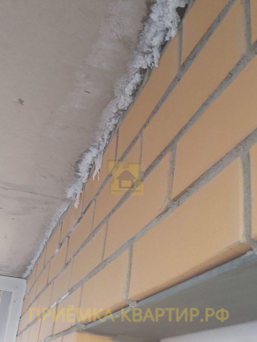 Приёмка квартиры в ЖК Новое Янино: плесень по всей квартире