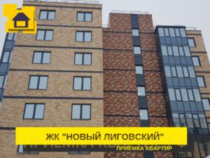 """Отчет о приемке 2 км. квартиры в ЖК """"Новый Лиговский"""""""