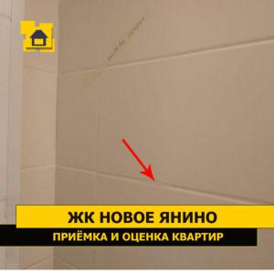 Приёмка квартиры в ЖК Новое Янино: Наплывы по затирке плитки