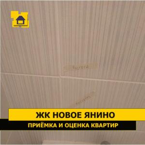 Приёмка квартиры в ЖК Новое Янино: Пустоты плитки