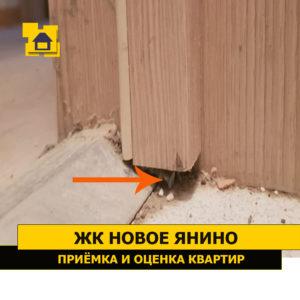 Приёмка квартиры в ЖК Новое Янино: Дверная коробка подрезанна не в размере
