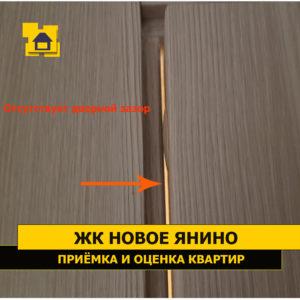 Приёмка квартиры в ЖК Новое Янино: Отсутствует дверной зазор