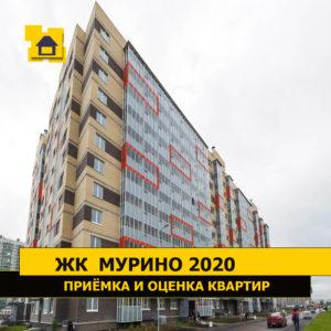 """Отчет о приемке 1 км. квартиры в ЖК """"Мурино 2020"""""""