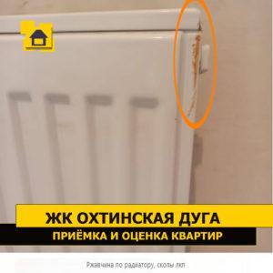 Приёмка квартиры в ЖК Охтинская Дуга: Ржавчина по радиатору, сколы лакокрасочного покрытия