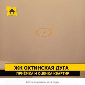 Приёмка квартиры в ЖК Охтинская Дуга: Выступление ржавчины по штукатурке