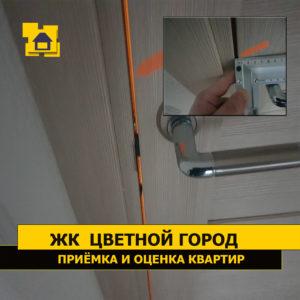 Приёмка квартиры в ЖК Цветной город: Дверной зазор более 6 мм. Требуется регулировка двери