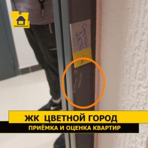 Приёмка квартиры в ЖК Цветной город: Скол лакокрасочного покрытия на входной двери