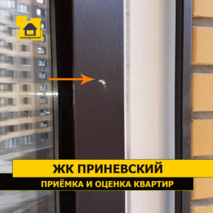 Приёмка квартиры в ЖК Приневский: Скол лакокрасочного покрытия на оконной раме снаружи