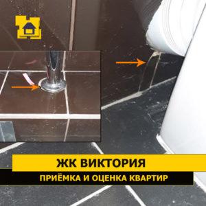 Приёмка квартиры в ЖК Виктория: Трещина на плитки, отсутствие затирки-герметика между гофрой и плиткой. Чашка не закреплене, не перекрывает отверстие.