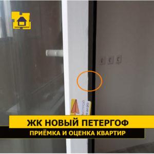 Приёмка квартиры в ЖК Новый Петергоф: Механические повреждения балконной двери, реставрация проведена с применением масляной краски