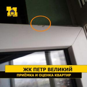 Приёмка квартиры в ЖК Петр Великий и Екатерина Великая: Скол на оконном профиле