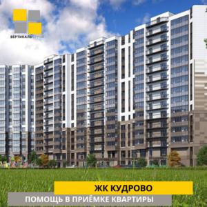 """Отчет о приемке 3 км. квартиры в ЖК """"Кудрово"""""""