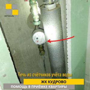 Приёмка квартиры в ЖК Кудрово: Течь из счётчиков учёта воды