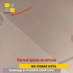Приёмка квартиры в ЖК Новая Охта: Наплыв краски на потолке