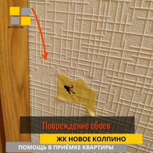 Приёмка квартиры в ЖК Новое Колпино: Повреждение обоев