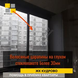 Приёмка квартиры в ЖК Кудрово: Волосяные царапины на глухом стеклопакете более 30 мм